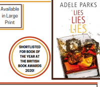 Lies Lies Lies by Adele Parks Library Poster